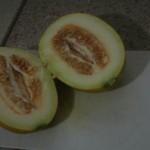 Melone (interno)